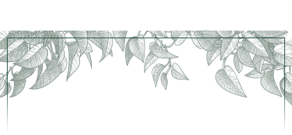 plants-panel-top-420.png